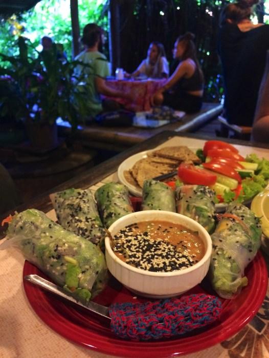 Rouleaux printaniers et hummous au Earth Tone - Les Restaurants et Cafés - Pai et la fraicheur des montagnes - Asie, Thaïlande