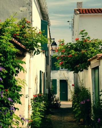 Les rues fleuries - Ile de Ré - Destination Nouvelle-Aquitaine - France, Europe