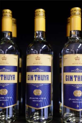 Bouteilles de gin - Distillerie Fils du Roy - Un épicurien à Rivière-du-Loup - Amérique du Nord, Canada, Québec, Bas St-Laurent