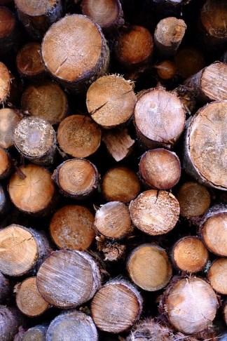 Corde de bois - Quelques idées supplémentaires - Balade en Beauce - Amérique du Nord, Canada, Québec, Chaudière-Appalaches