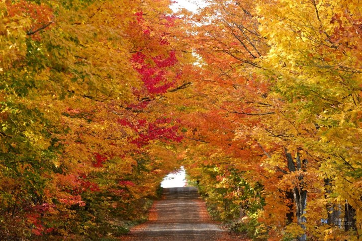 Les routes de campagne - Quelques idées supplémentaires - Balade en Beauce - Amérique du Nord, Canada, Québec, Chaudière-Appalaches
