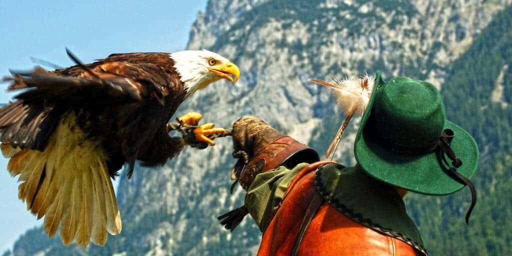 Hoenwerfen Fortress eagles show