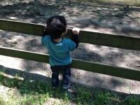 子供がすぐ怒る・落ち着きがない。発達障害を疑う前に考えるべきこと