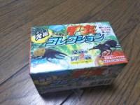 100円ショップの「甲虫コレクション」をやらせてみた。小さな子供には難しいかも