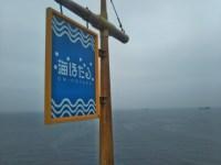 海ほたるは天気が悪くても楽しい。海と飛行機に子供は喜んでくれる