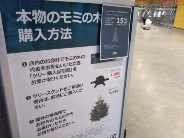 【2018】IKEAで本物のモミの木購入。クリスマスが終わったら返却できる