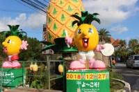 ナゴパイナップルパークで子供が大はしゃぎ。迷路みたいな通路とパイナップル号に喜ぶ