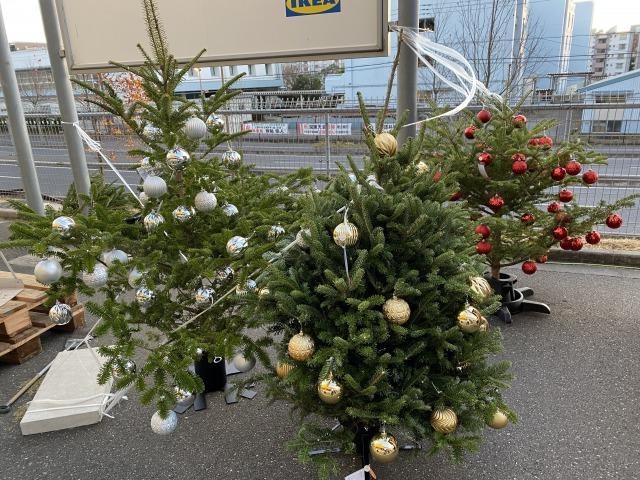 【2020年】IKEAの本物のもみの木購入。昨年と違って発売当日(11月19日)は混雑