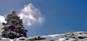 sierra nieves parque natural