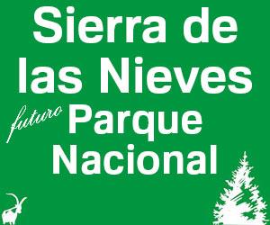 sierra-de-las-nieves-parque-nacional-300x250
