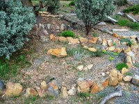 The rock garden with a gravel path | Sierra Foothill Garden