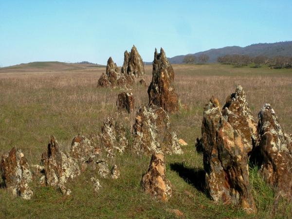 Jurassic park- tombstone rock along Rock Creek Rd, Copperopolis, CA