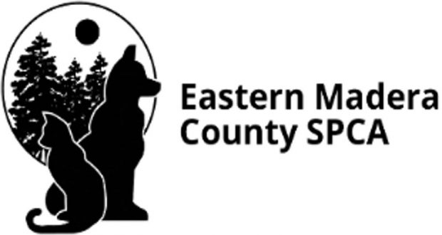 Oakhurst Democratic Club Meet Features Update On EMCSPCA
