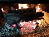 Lisa's List: Three Things To Do With Fireplace Ashes ...