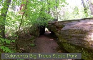 Calaveras big tree state park Header Sierra Rec Magazine