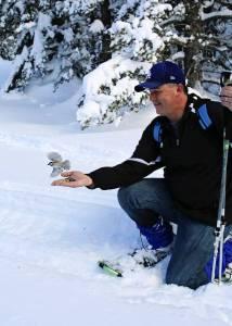 snowshow chickadee ridge tahoe