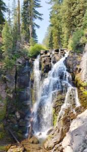 Kings Creek Falls LAssen vert