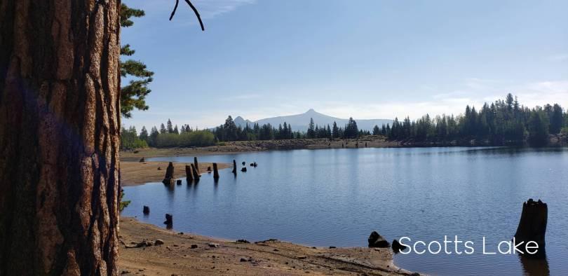 Scotts Lake 2020