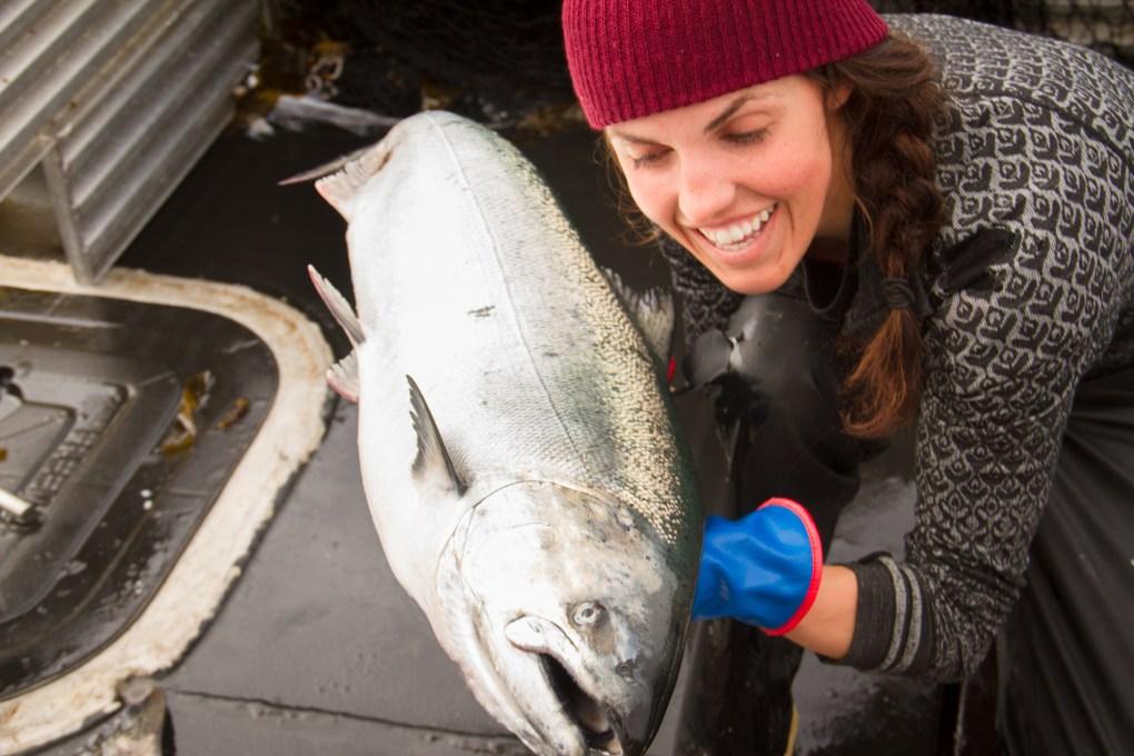 chignik sierra and fish