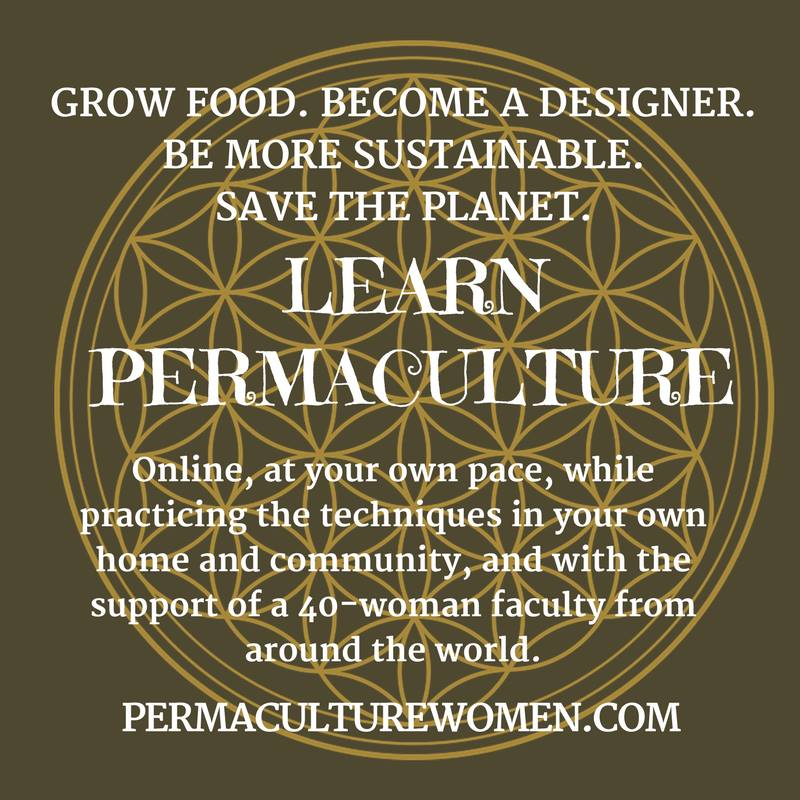 Online Permaculture Design Course Sierra Seeds