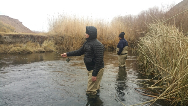 Lower owens river fly fishing report bishop ca 1 for Owens river fishing report