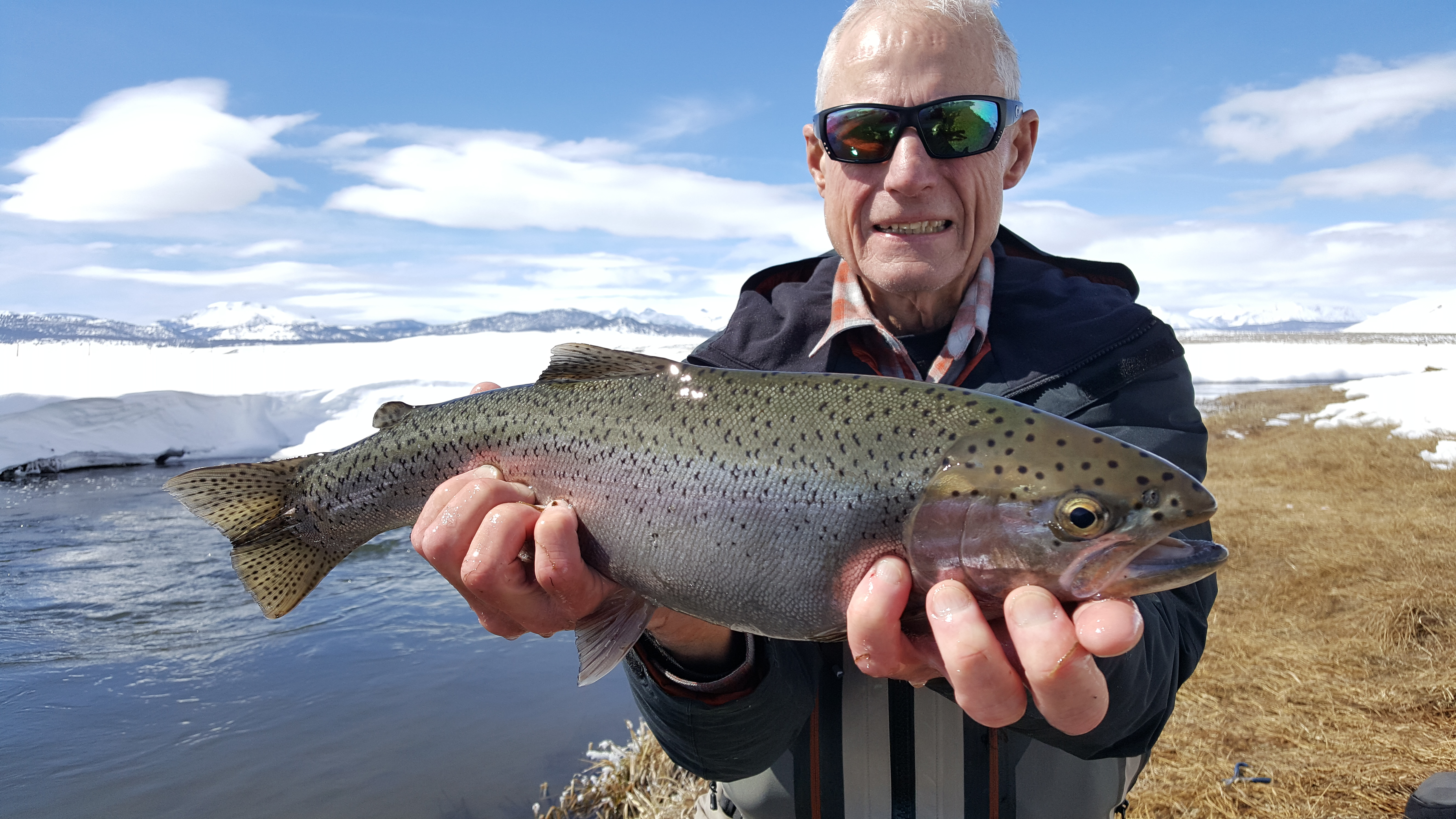 Upper owens fly fishing report mammoth lakes ca for Bishop ca fishing report