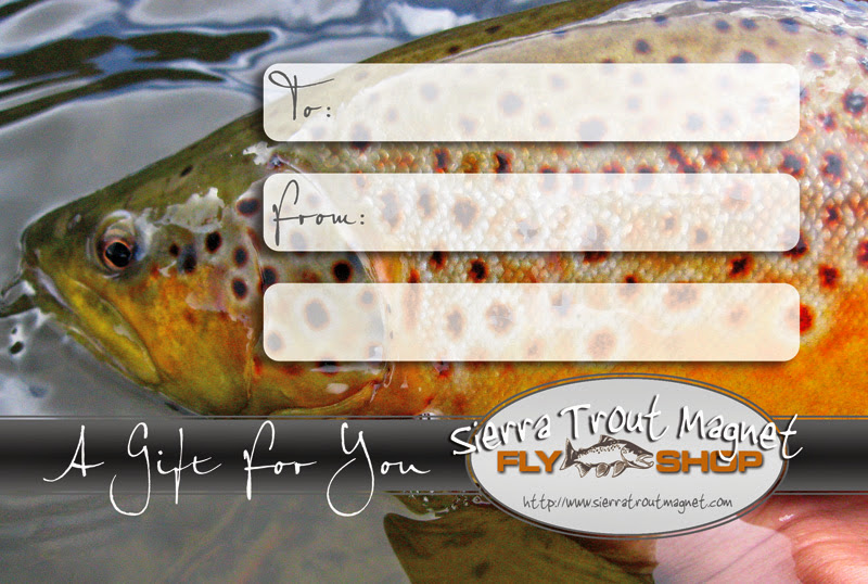 gift certificate for a guided fly fishing trip