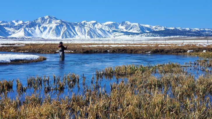 a fly fisherman stands in the Upper Owens River near Mammoth Lakes CA, some snow is around and melting