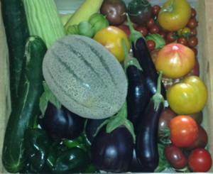 farmersmarketsummer