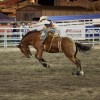 Photos courtesy of Tri-County Fair
