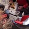 Rescued Husky-German Shepherd at bottom of Owens Valley River Gorge