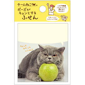 fukidashi_AM03422