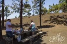 Пикник на Тенерифе в тени канарских сосен
