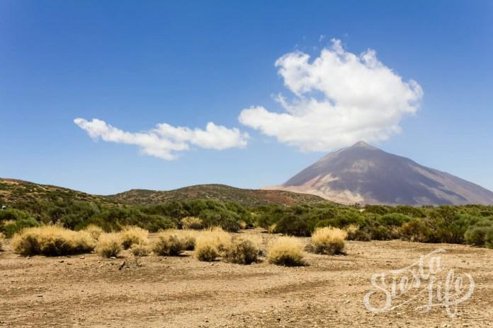 У подножия вулкана Тейде на острове Тенерифе