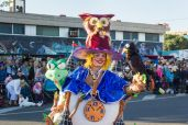 Главное шествие карнавала на Тенерифе в 2016 году — девочка в костюме замка со зверятами