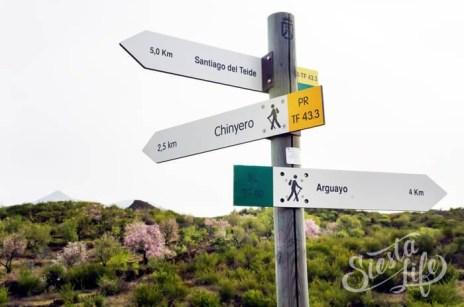 Указатель пешего маршрута на Вулкан Чиньеро
