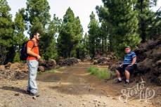 Привал в канарском лесу