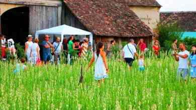 Photo of Mii de turiști la Sărbătoarea Tuberozelor de la Hoghilag în weekend-ul trecut