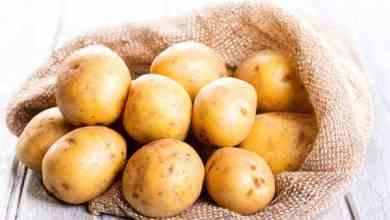 Photo of Tratamente cu cartofi pentru boli grave