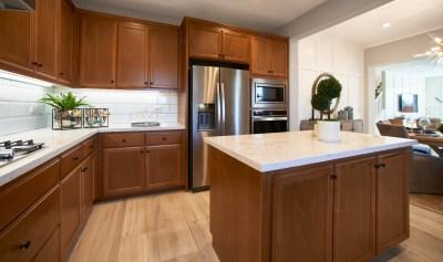 Kitchen_DSC9237