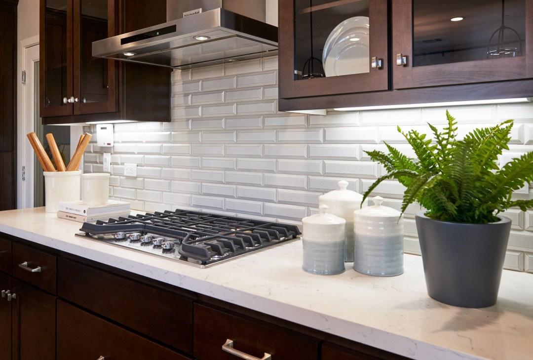 alta_new_homes