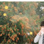 花粉症の検査は何科で受診すべきか?検査の方法や費用は?