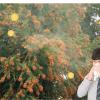 花粉症のアンケートの意義は?花粉症アンケート教訓と医師の花粉症対策調査!
