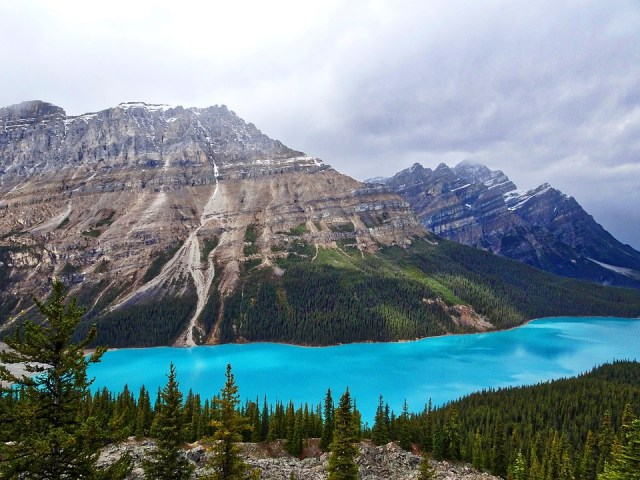 a guide to canada - peyto lake
