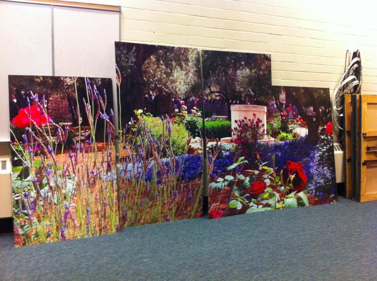 Canvas Prints Edmonton North