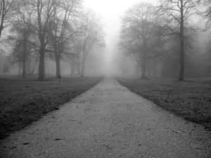 gris color de la soledad