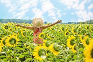 Como Se Tornar Um Ímã Para a Felicidade?