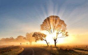 9 Maneiras Poderosas De Aproveitar a Energia Positiva Em Sua Vida