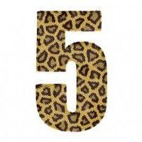 El Significado del Número 5