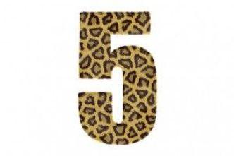 numero 5 significado